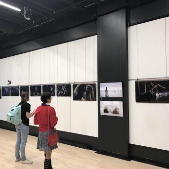 Exposition Alan Lake - FCVQ - septembre 2017